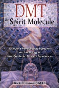 BC_dmt_spirit_molecule_0