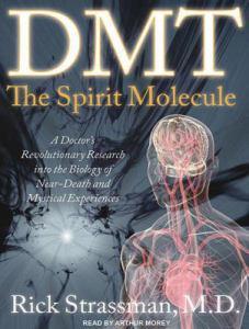 Dmt-The-Spirit-Molecule-Strassman-Rick-9781452601458