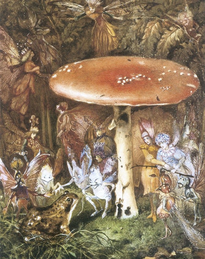 'Fungi, Folklore, and Fairyland' by Mike Jay